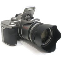 Цифровая камера Panasonic DMC-FZ50EE-S 10MP Silver